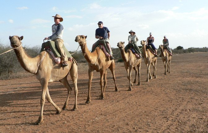 Desert Safari Marsa Alam-with Jeep,Quad Biking,Camel Ride,BBQ-Desert T